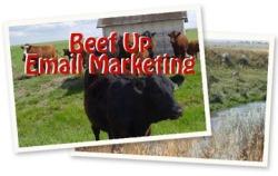 Beef UP