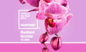 2014_Color_trends_radiant_orchid_1