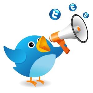 twitter-ads-300x300